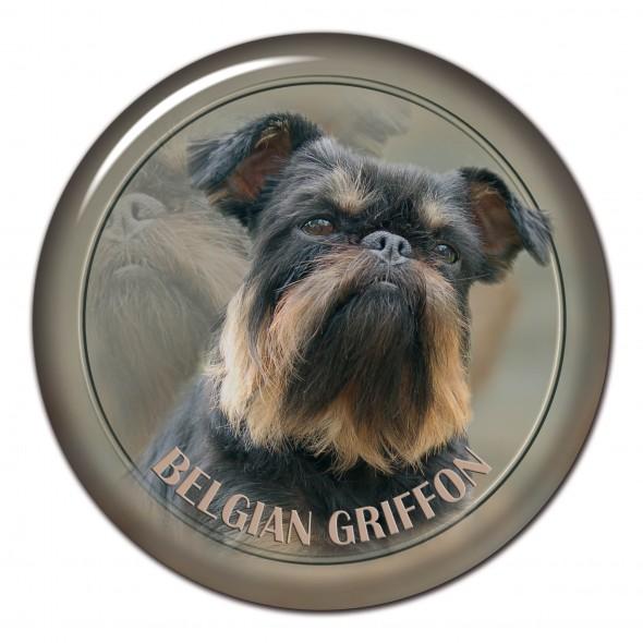 Belgian Griffon