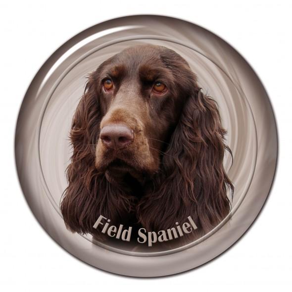 Field Spaniel