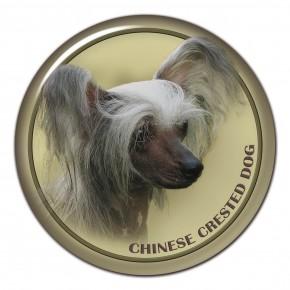 Čínský Chocholatý Pes 102 C