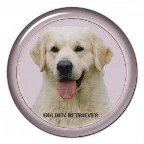 Zlatý Retrívr 101 C