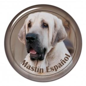 Španělský Mastin 101 C