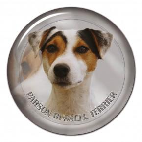 Parson Russel Teriér 101 C