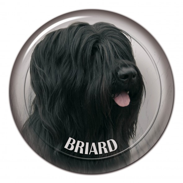 Briard