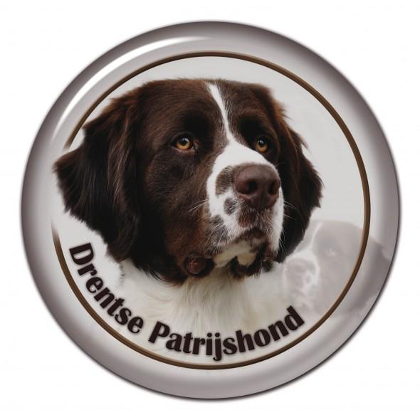 Drentsche Patrisijshond