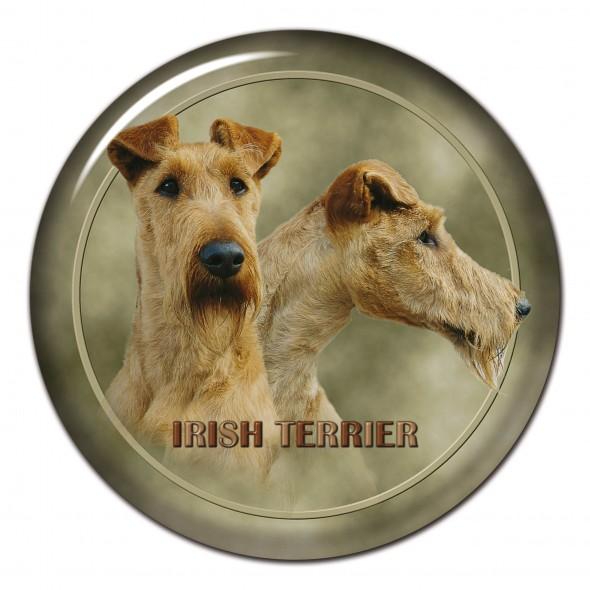 Irish Terrier 139