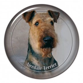 Airedale Teriér 102 C