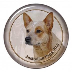 Australský Honácký Pes 102 C