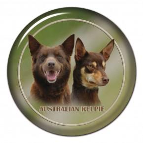 Australská Kelpie 101 C