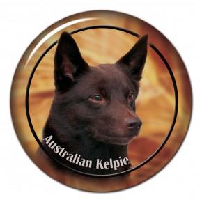Australská Kelpie 102 C