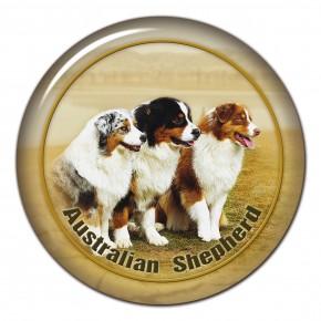 Australský Ovčák 101 C