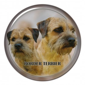 Border Teriér 102 C