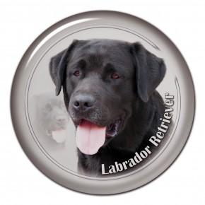 Labradorský Retrívr 104 C