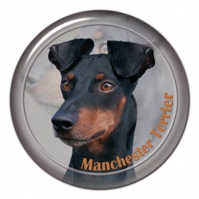 Manchester Teriér 101 C